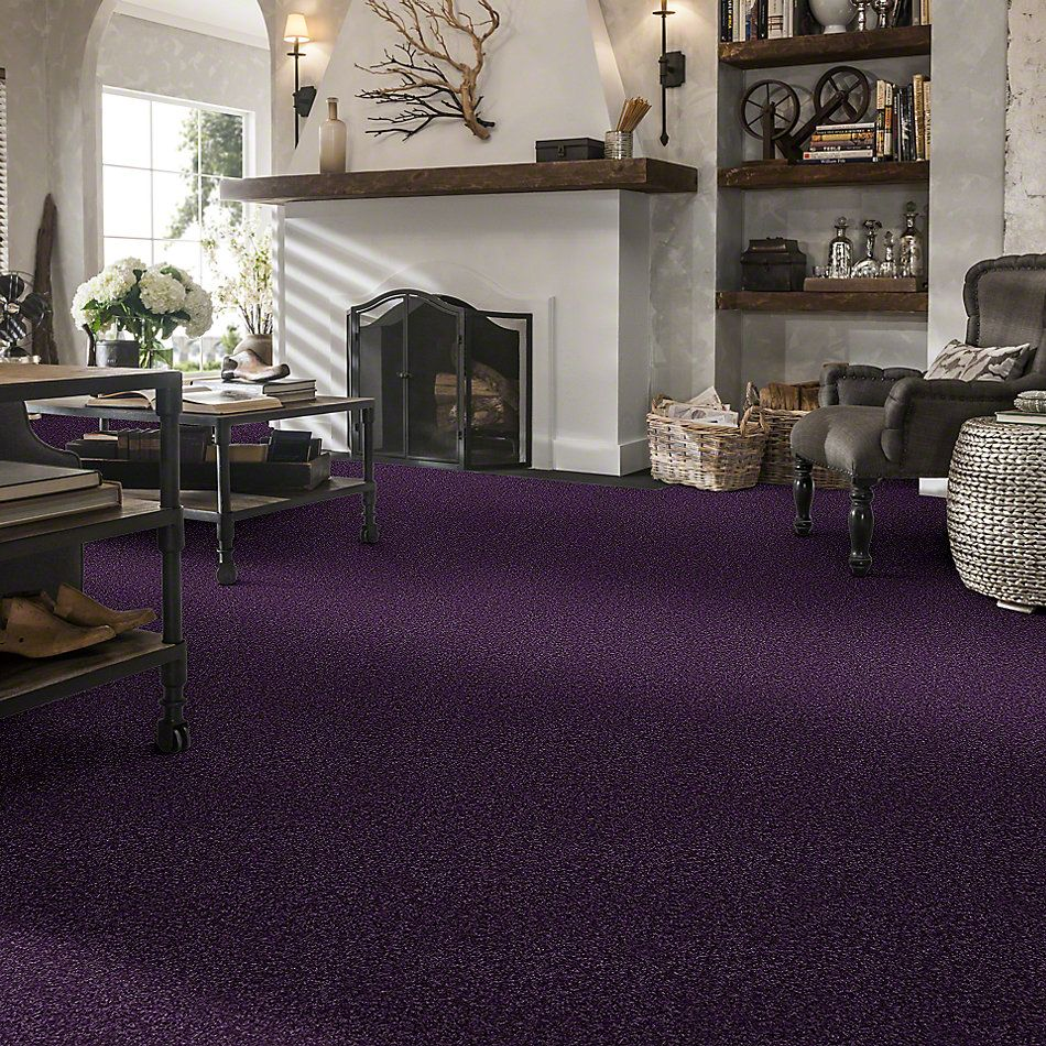 Shaw Floors Shaw Design Center Kid Crazy Grape Jelly 00931_5C654