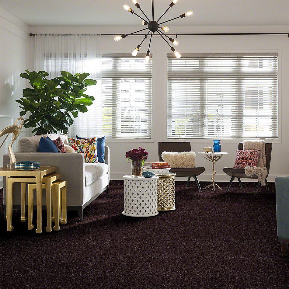 Shaw Floors Anso Colorwall Platinum Twist Kudu Berries 00933_EA576