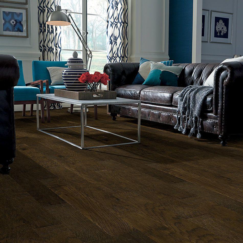 Shaw Floors Shaw Hardwoods Heathrow Bison 00944_XW019