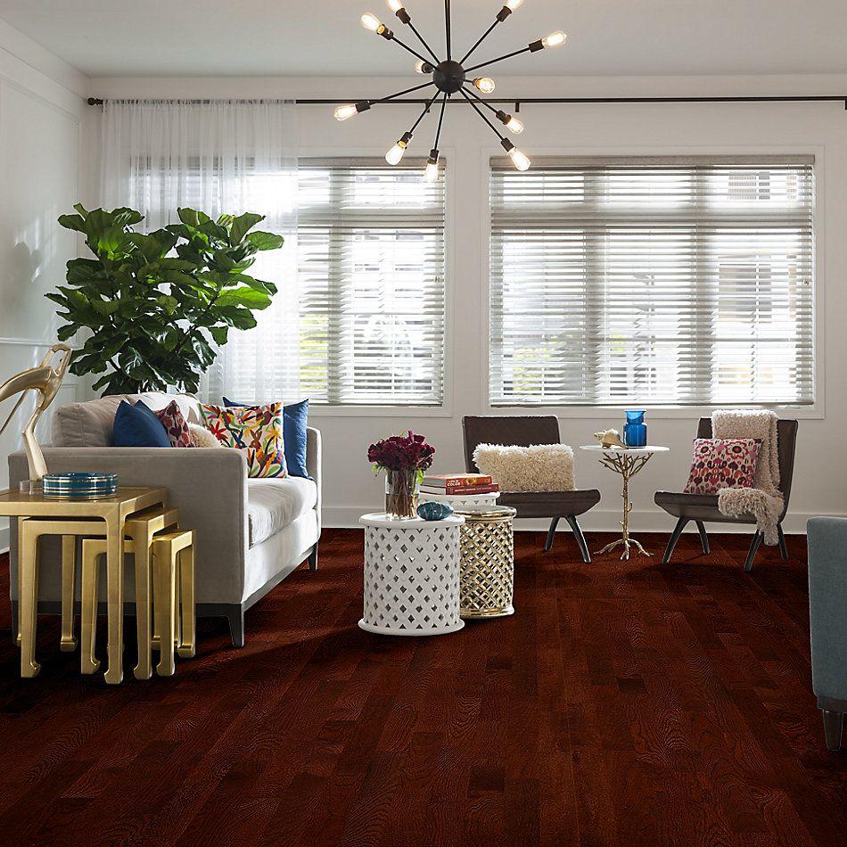 Shaw Floors Home Fn Gold Hardwood Family Reunion 3.25 Cherry 00947_HW425