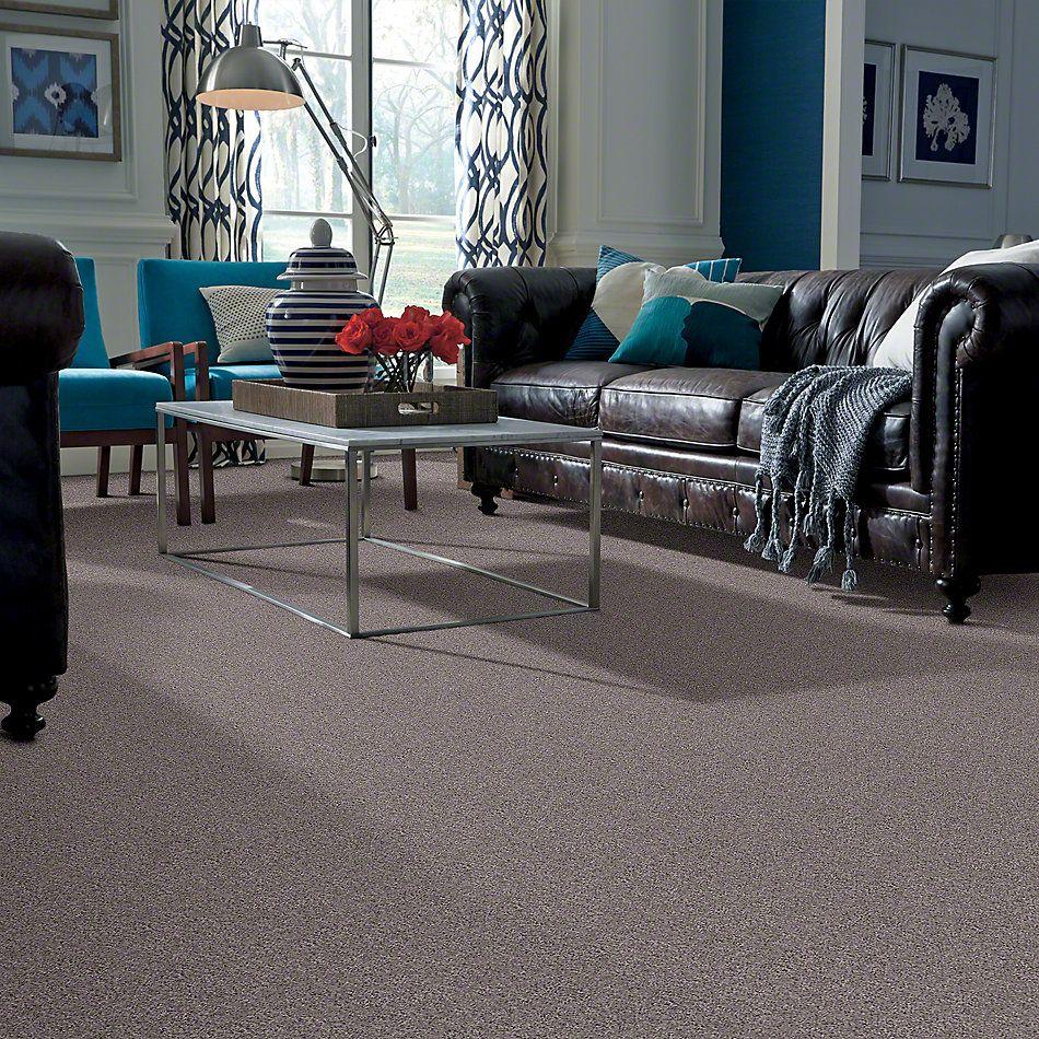 Shaw Floors SFA My Inspiration III Sepia 00950_EA561