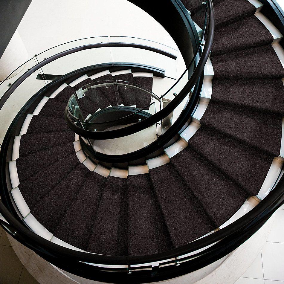 Shaw Floors Shaw Flooring Gallery Inspired By I Urban Loft 00951_5559G