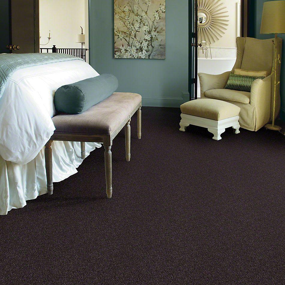Shaw Floors My Choice III Urban Loft 00951_E0652