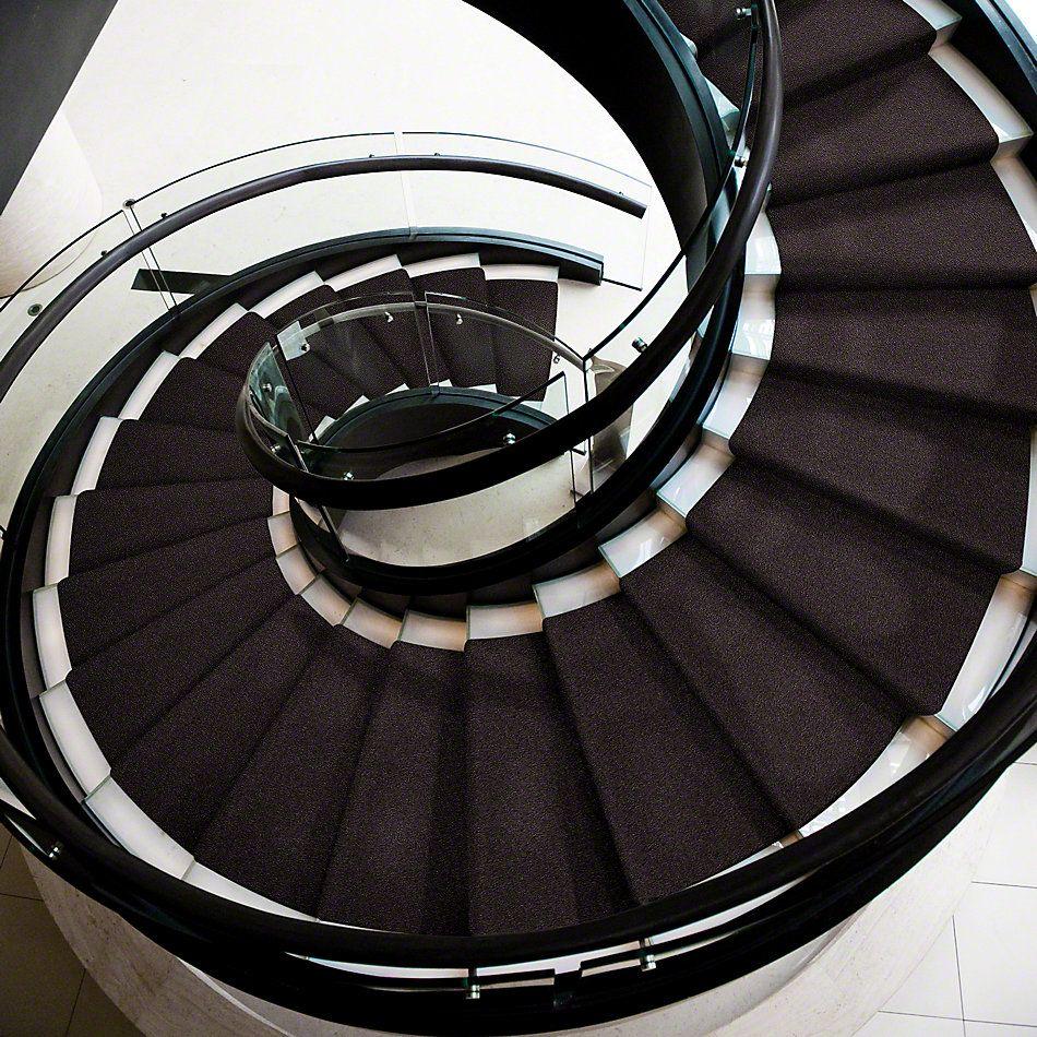 Shaw Floors SFA My Inspiration III Urban Loft 00951_EA561