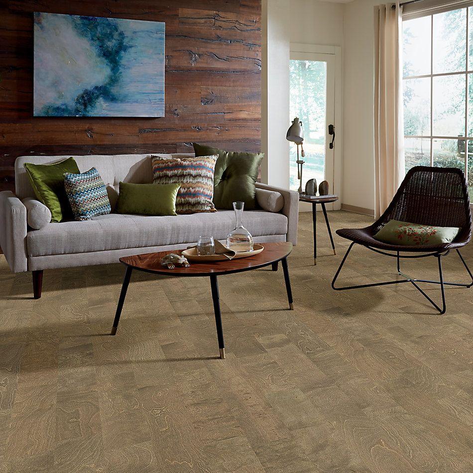 Shaw Floors Dr Horton Riverland Crescent Beach 01023_DR625