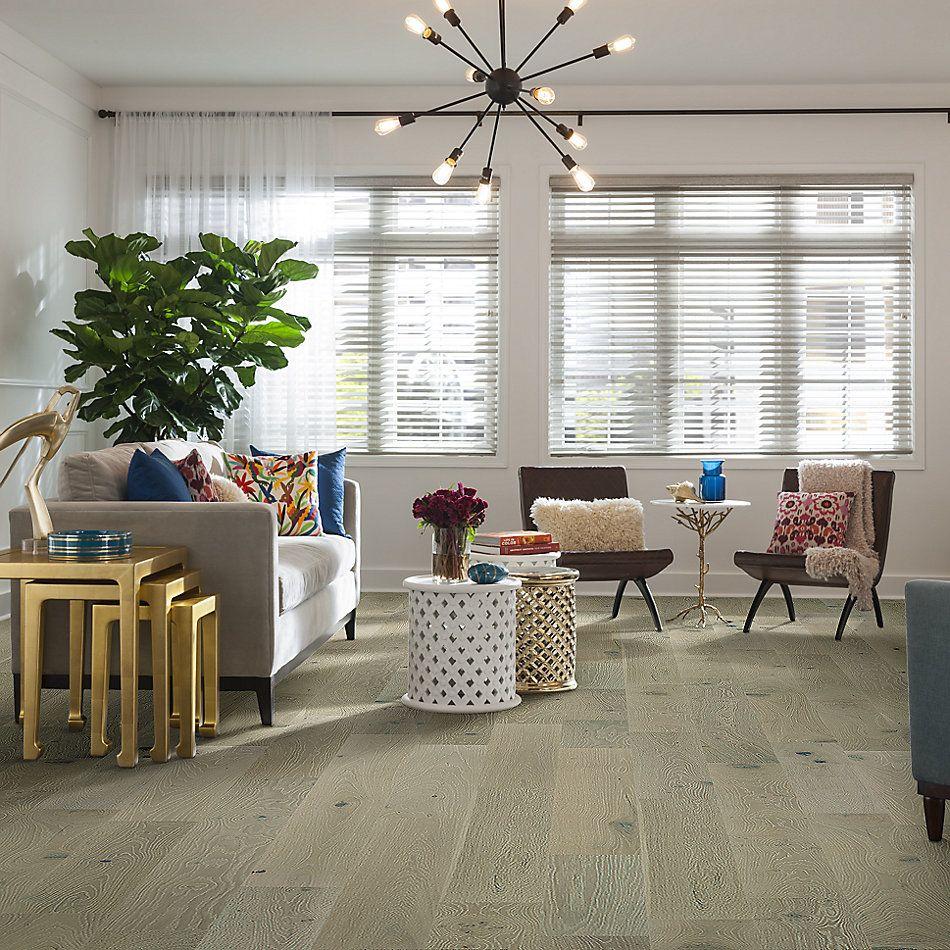 Shaw Floors Fischer Homes Hyde Park Knight 01075_FSH05