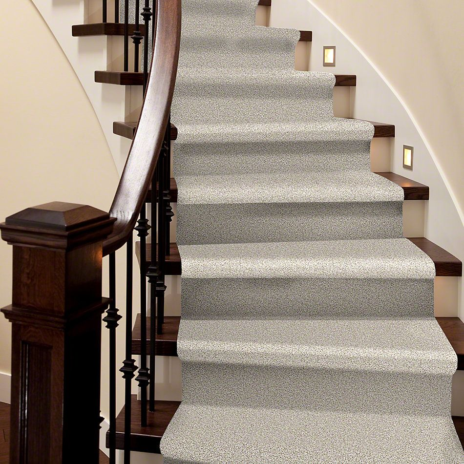 Shaw Floors Caress By Shaw Delicate Distinction Classic I Valley 0141B_BCC17