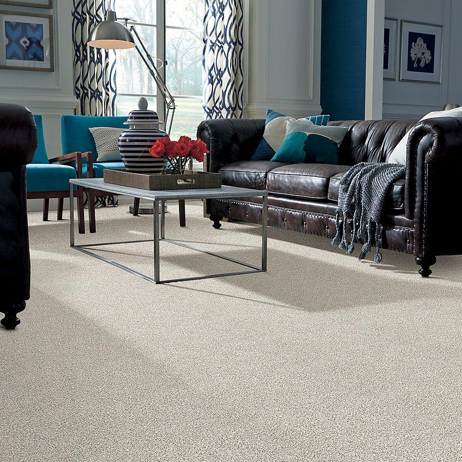 Shaw Floors SFA Devon Classic III Lg Valley 0141B_CC15B