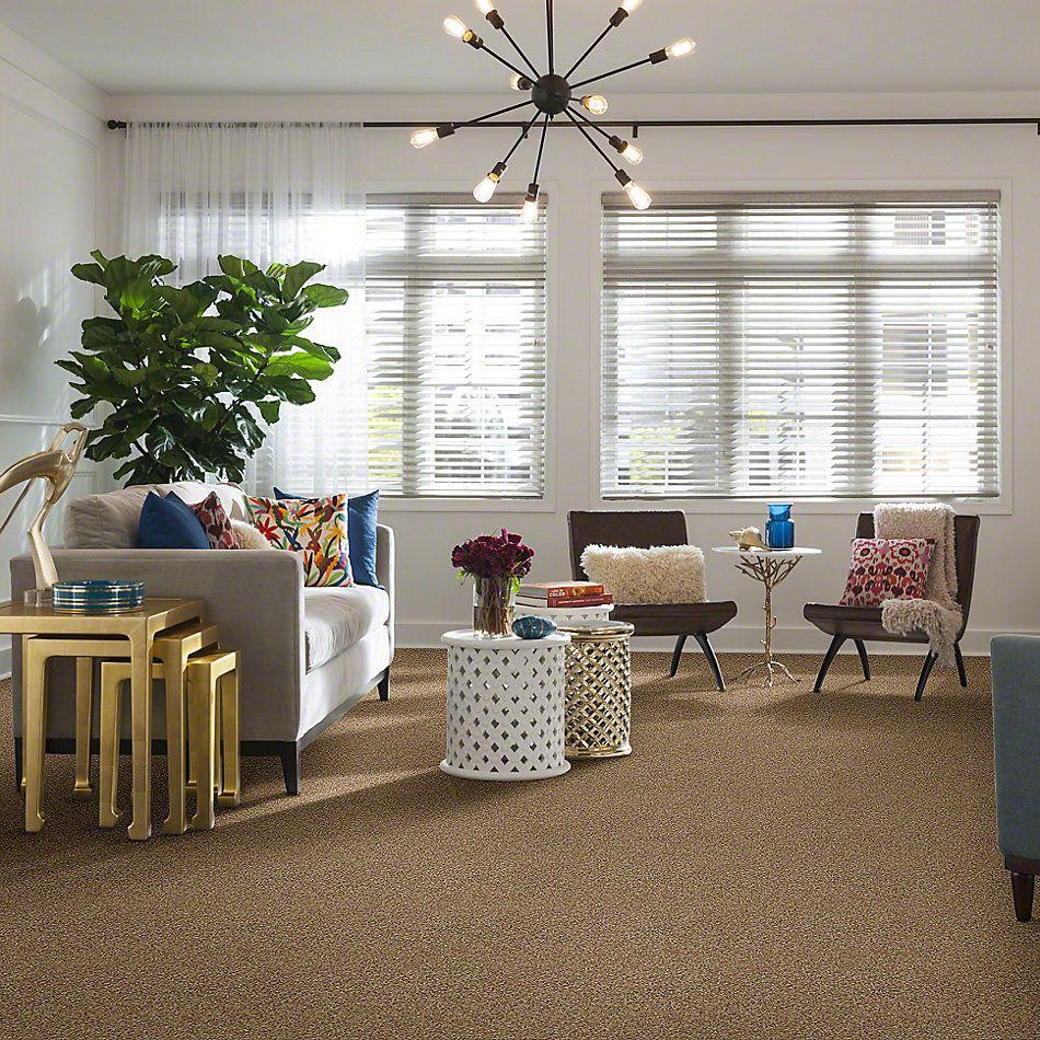 Anderson Tuftex Shaw Design Center Turn It Up I Berber Raw Silk 0172B_813SD