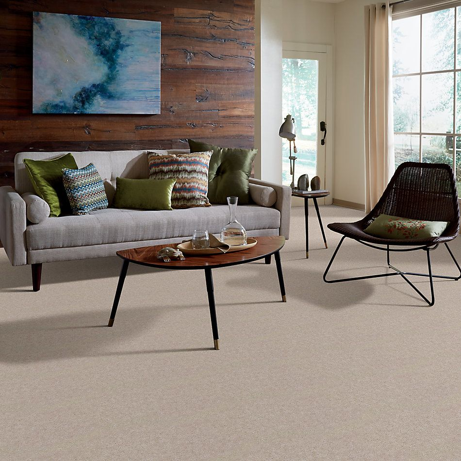 Shaw Floors SFA Mountain Town Mist 01855_05019
