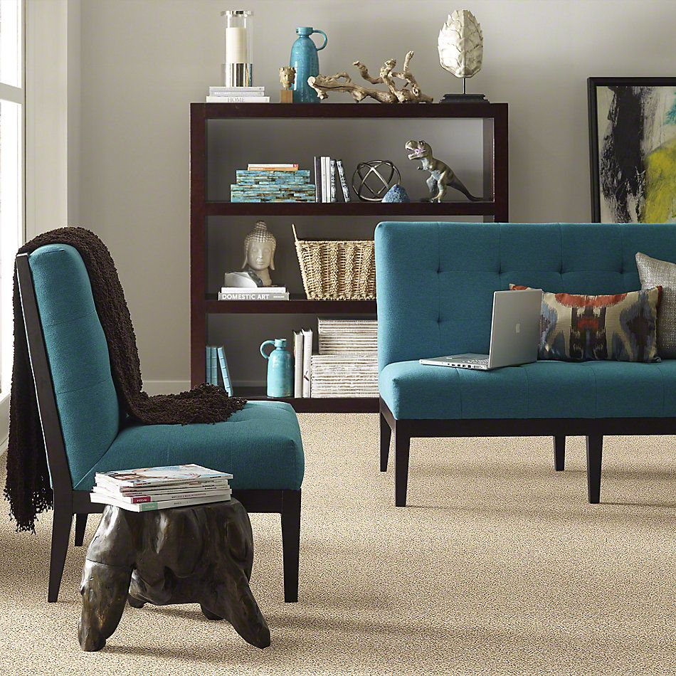 Shaw Floors Caress By Shaw Delicate Distinction Classic I Toasted Grain 0241B_BCC17