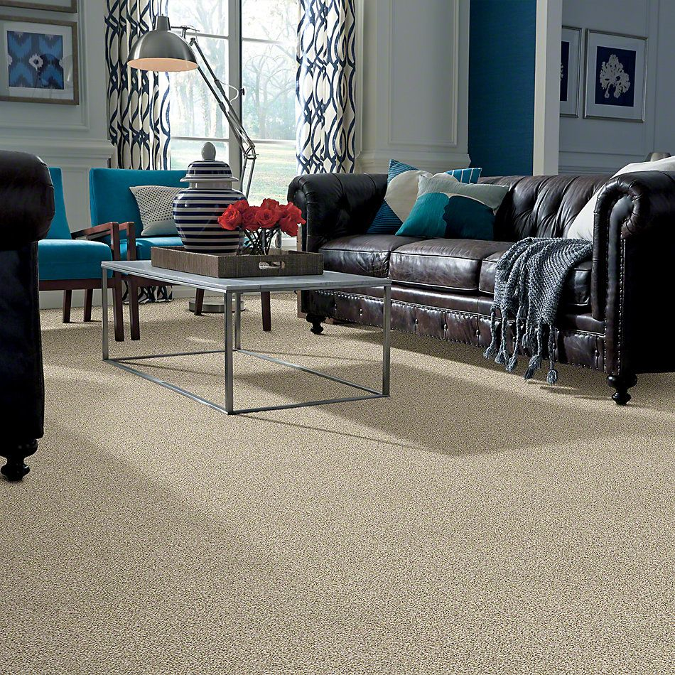 Shaw Floors Caress By Shaw Devon Classic Iv Celtic 0341B_CCS96