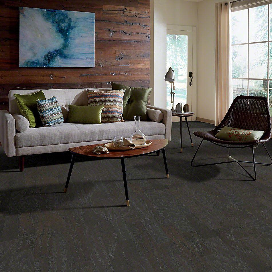Shaw Floors Dr Horton Ann Arbor 3.25 Charcoal 05013_DR667