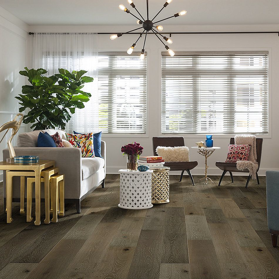 Shaw Floors Fischer Homes Hyde Park Palisade 05022_FSH05