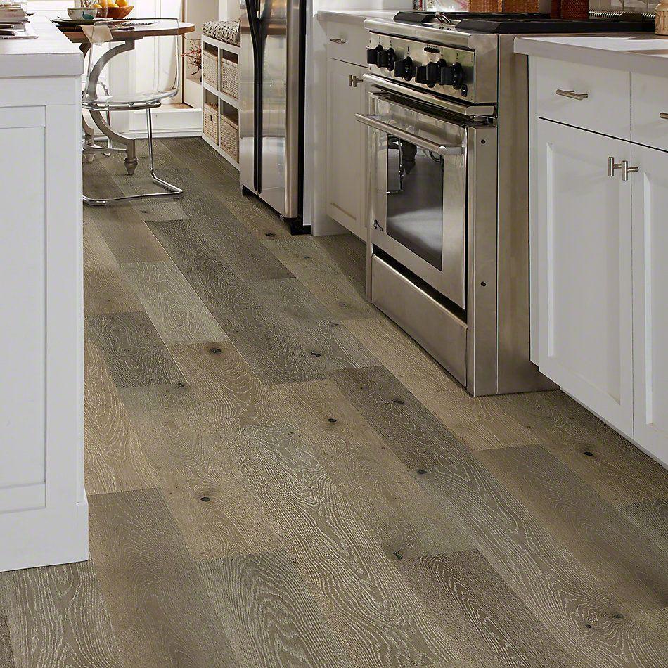 Shaw Floors SFA Argonne Forest Oak Palisade 05022_SA419