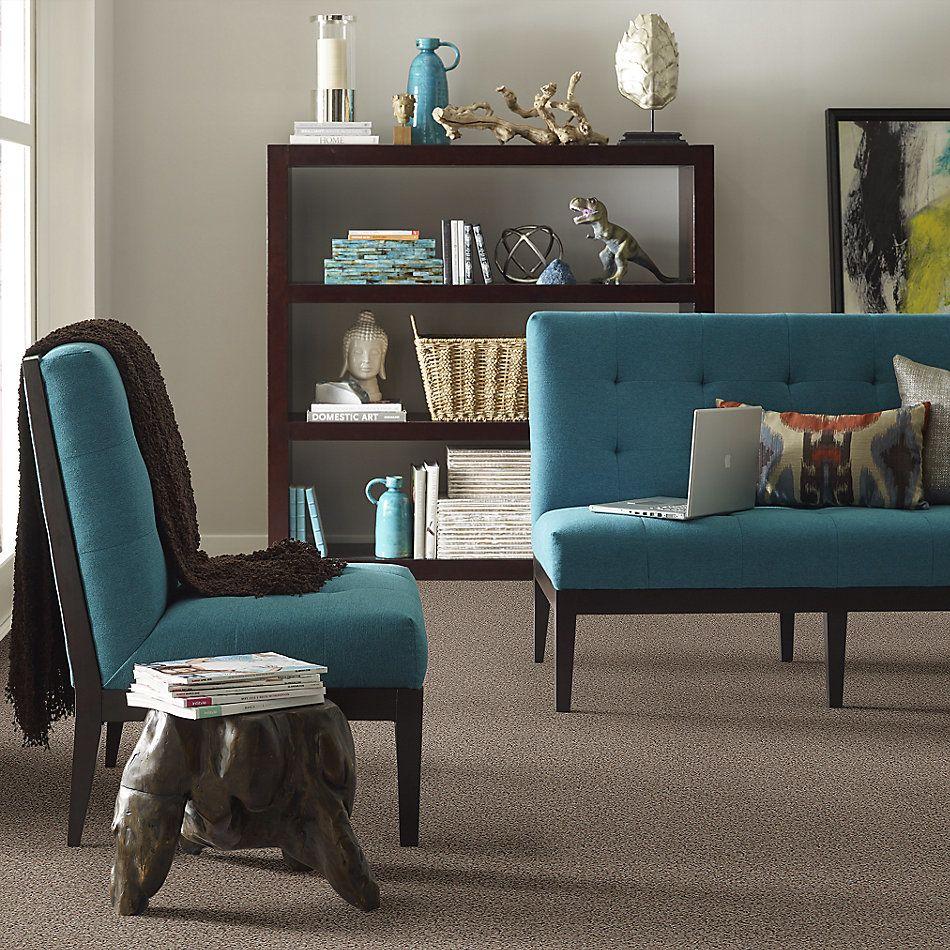Anderson Tuftex American Home Fashions Wish List Buckshot 0521B_ZZA06