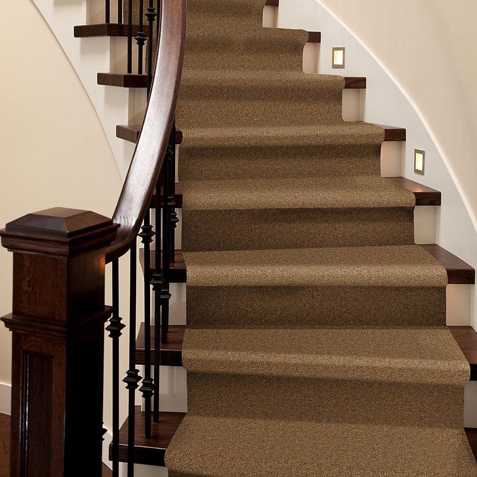 Shaw Floors Property Solutions Davenport Burlap 06185_HF006