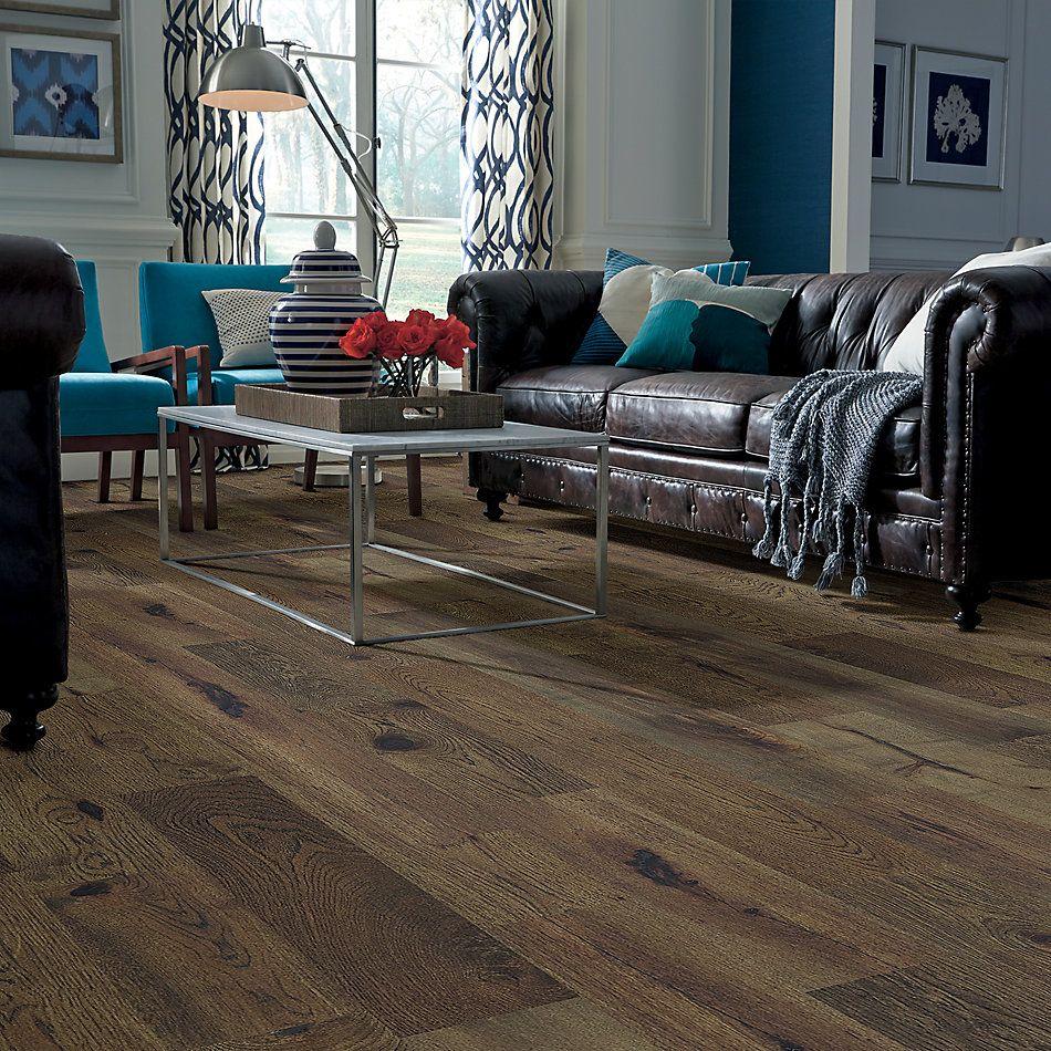 Shaw Floors Floorte Exquisite Cascade 07054_250RH
