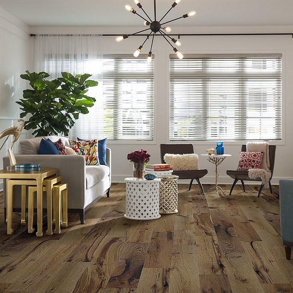 Shaw Floors Richmond American Homes Encore White Oak Woodlands 07066_HA246