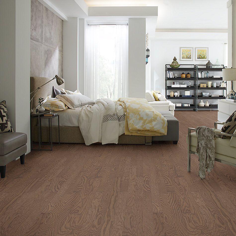 Shaw Floors Dr Horton Ann Arbor 3.25 Flax Seed Lg 07087_DR667