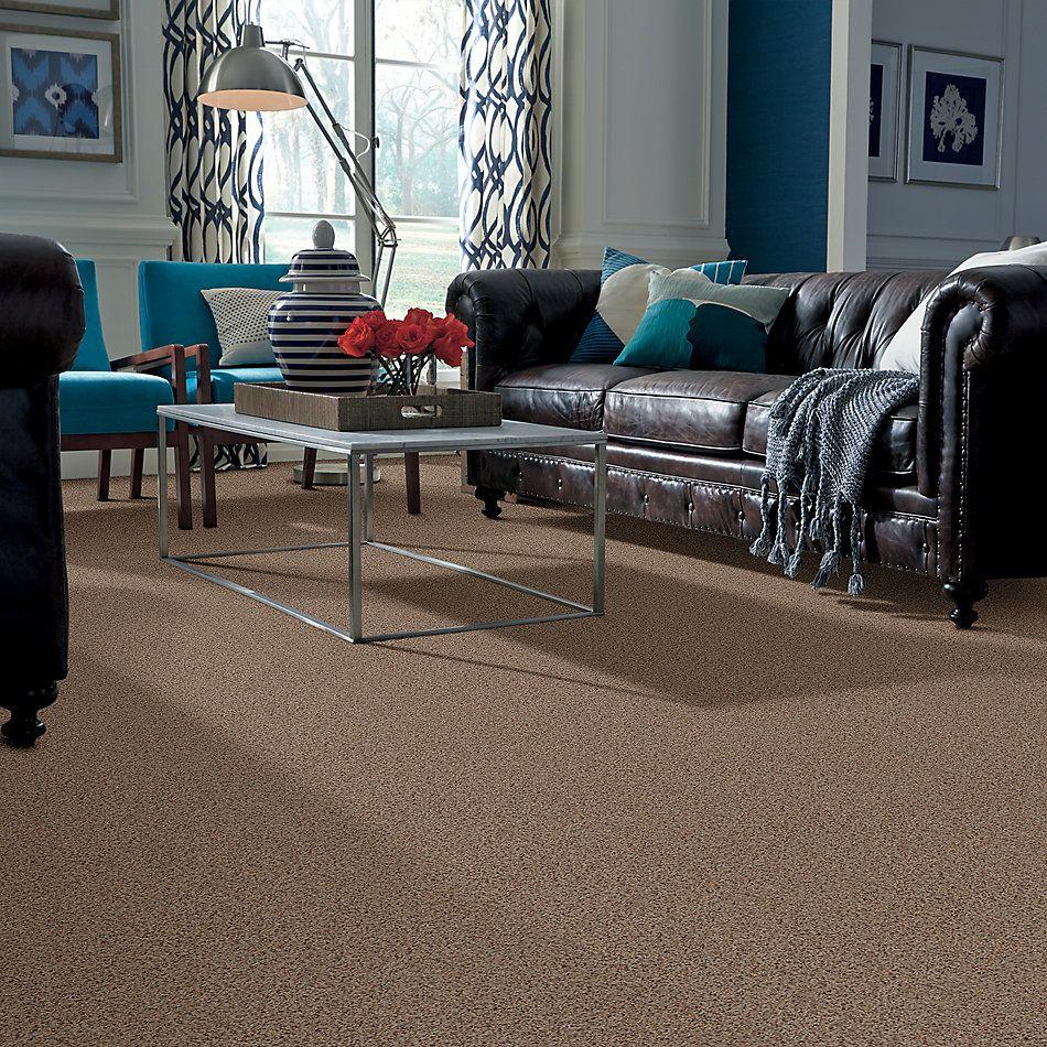 Anderson Tuftex American Home Fashions Our Place II Cinnamon Toast 0722B_ZJ005