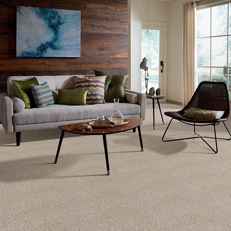 Shaw Floors SFA Devon Classic III Lg Granite 0741B_CC15B