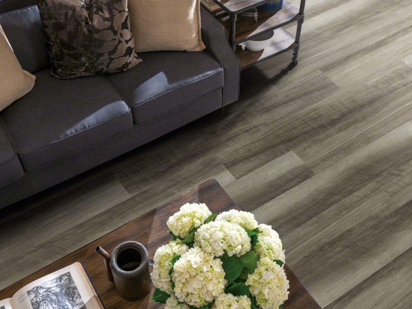 Shaw Floors Resilient Residential Endura 512g Plus Oyster Oak 00591_0802V