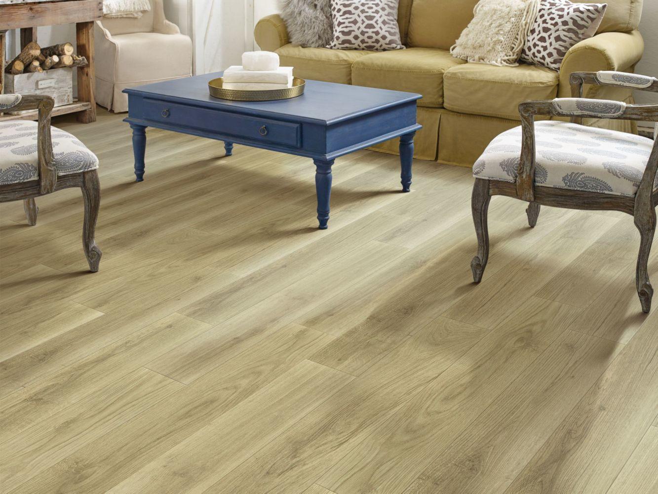 Shaw Floors Resilient Residential Tivoli Plus Rocco 00265_0845V