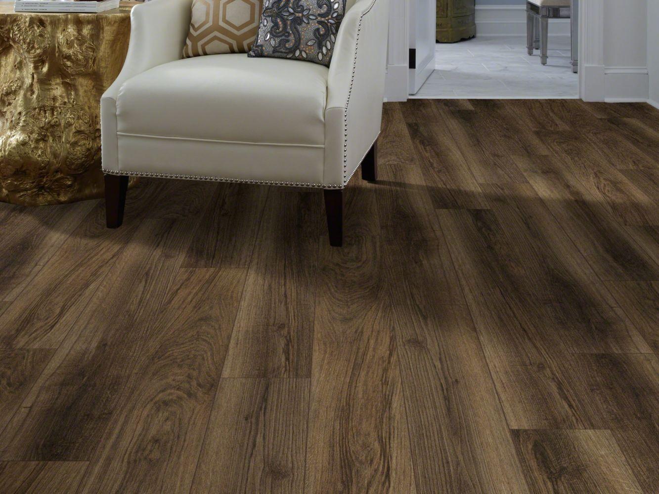 Shaw Floors Resilient Residential Tivoli Plus Cocco 00758_0845V