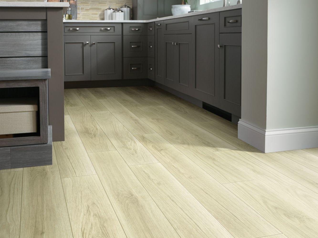 Shaw Floors Resilient Residential Tivoli Plus Tuscany 01004_0845V