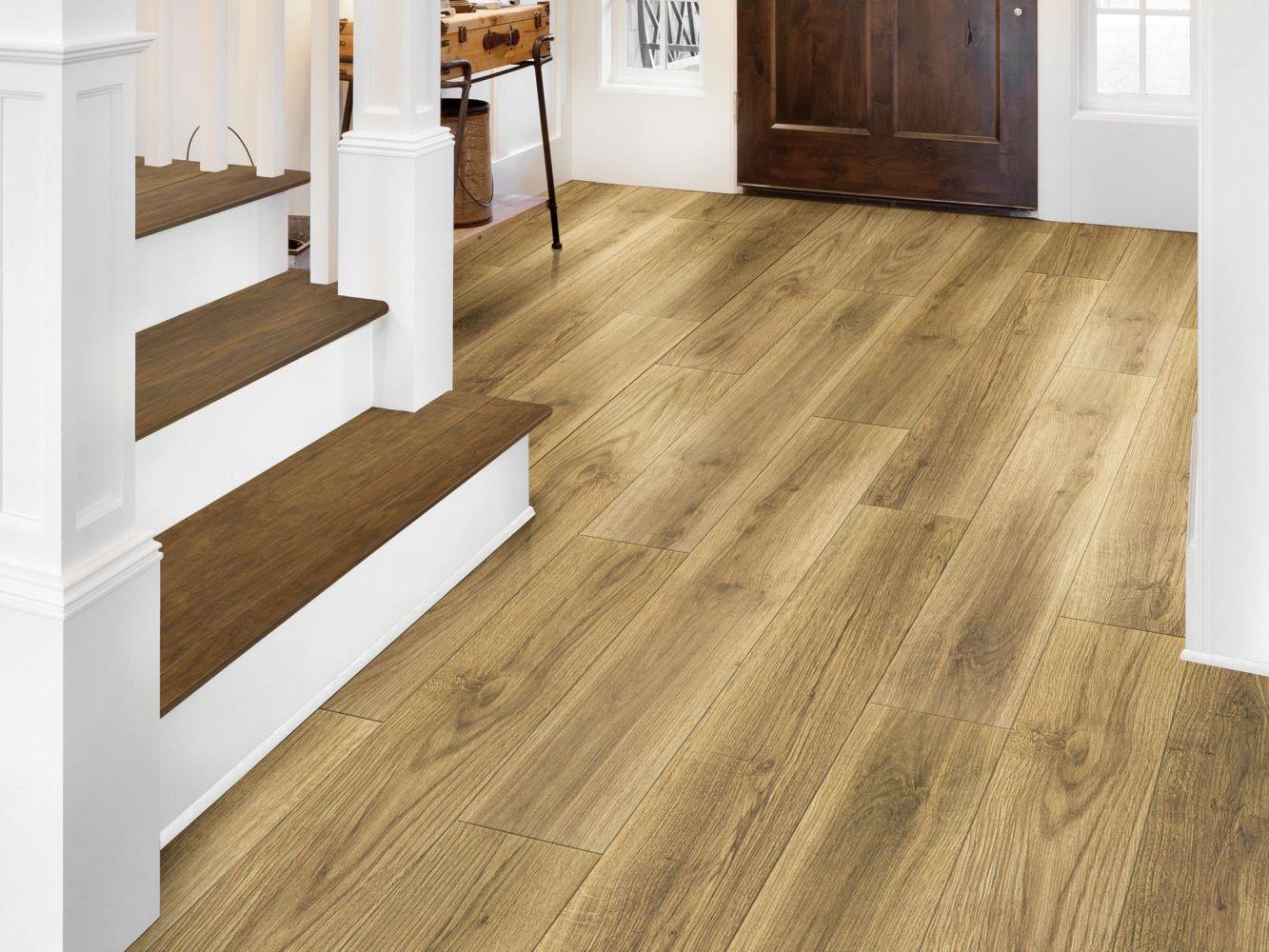 Shaw Floors Resilient Residential Tivoli Plus Tesora 07057_0845V