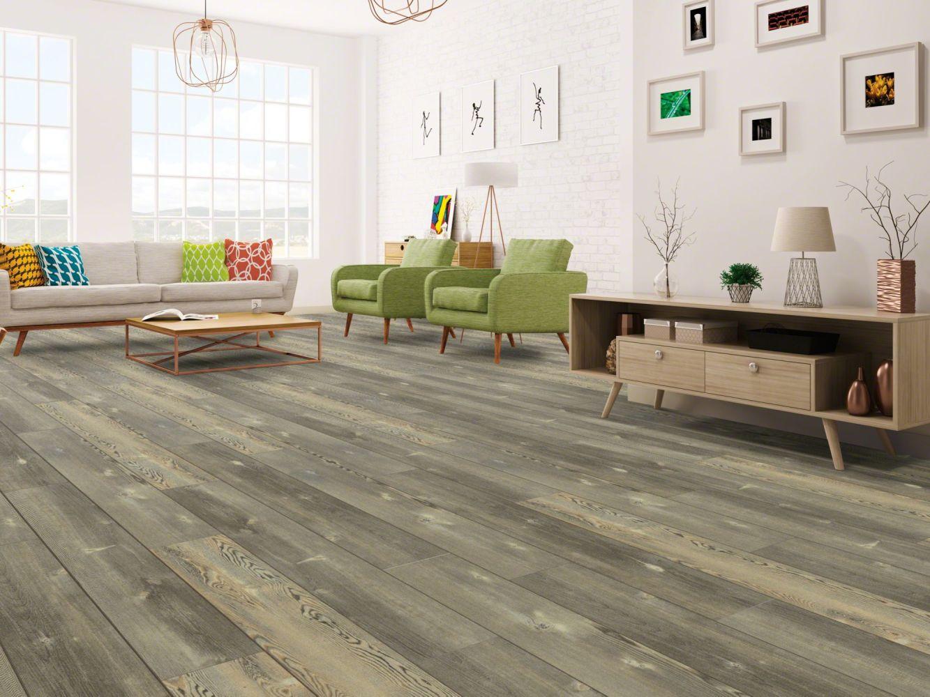 Shaw Floors Resilient Residential Blue Ridge Pine 720g Plus Pitch Pine 00167_0868V