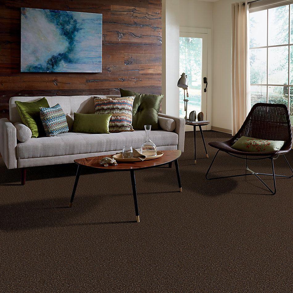 Anderson Tuftex AHF Builder Select I Belong Pine Needle 08736_ZL968