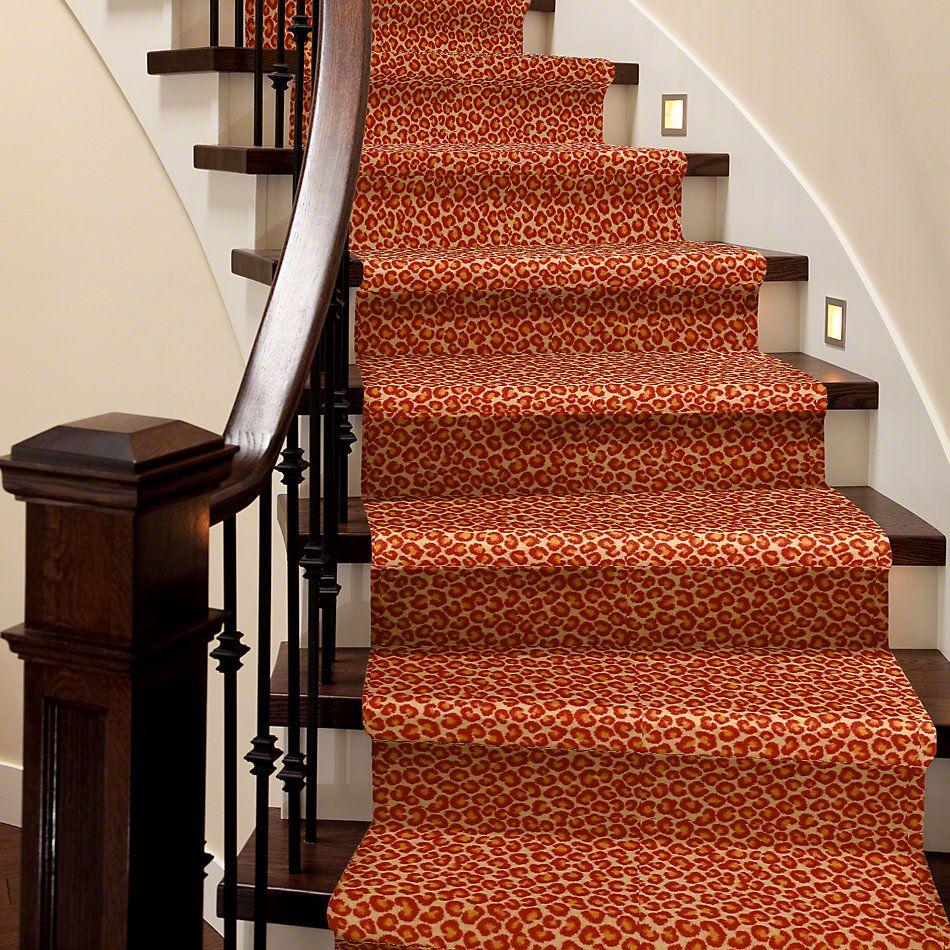 Philadelphia Commercial Call Of The Wild Cheetah Big Cat 09600_54509