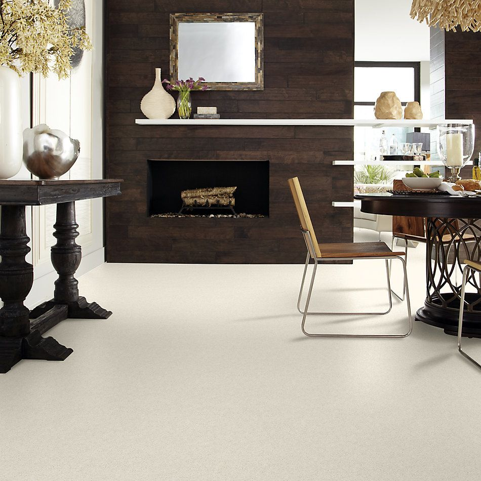 Shaw Floors Value Collections Attainable Net Blizzard 100S_5E094