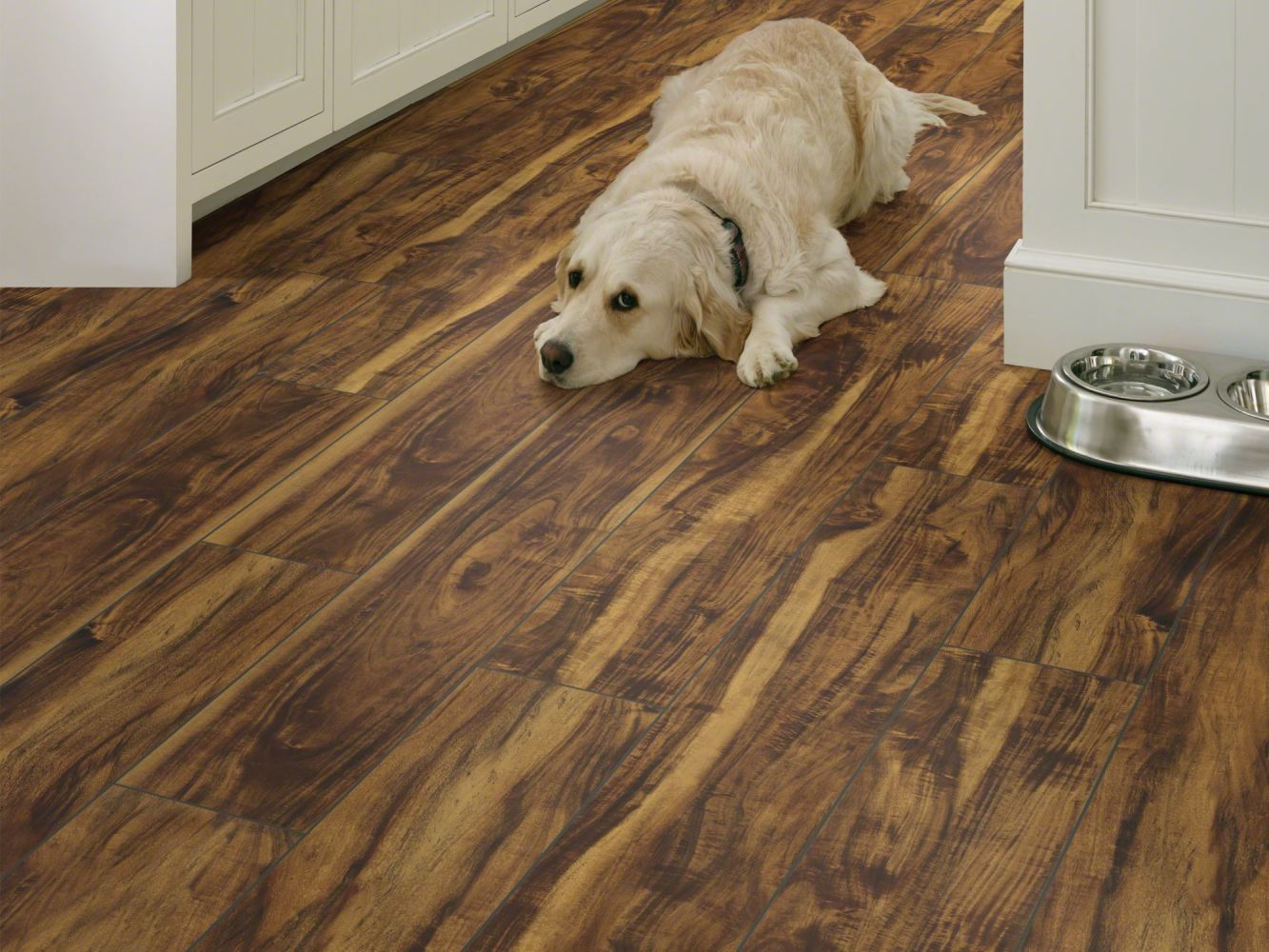 Shaw Floors Resilient Residential Paragon 7″ Plus Rainforest Acacia 00696_1020V