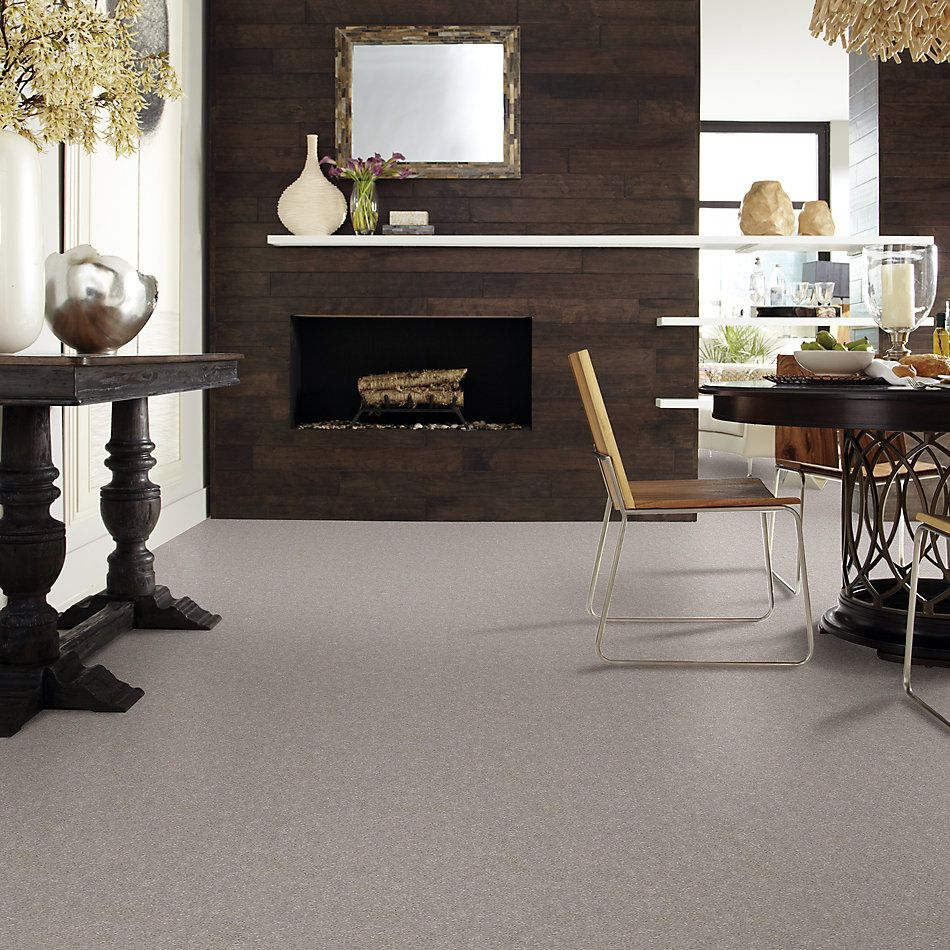 Shaw Floors Value Collections Momentum II Net Canopy 103S_5E097