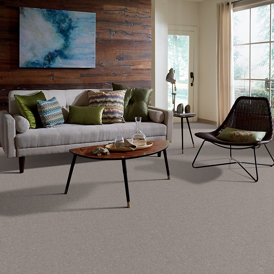 Shaw Floors Simply The Best Momentum I Canopy 103S_E9967