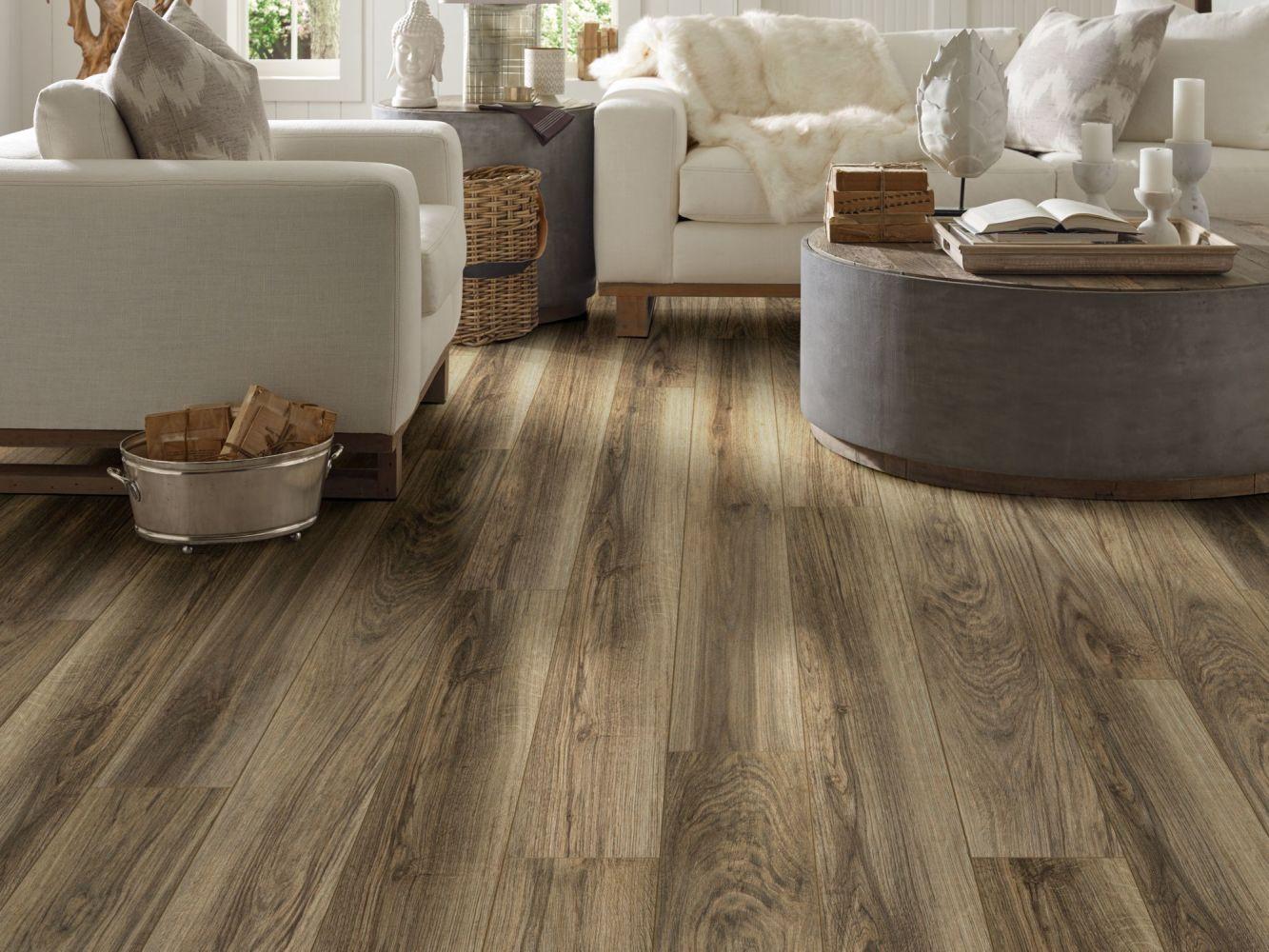 Shaw Floors Reality Homes Makah Riva 00165_109RH