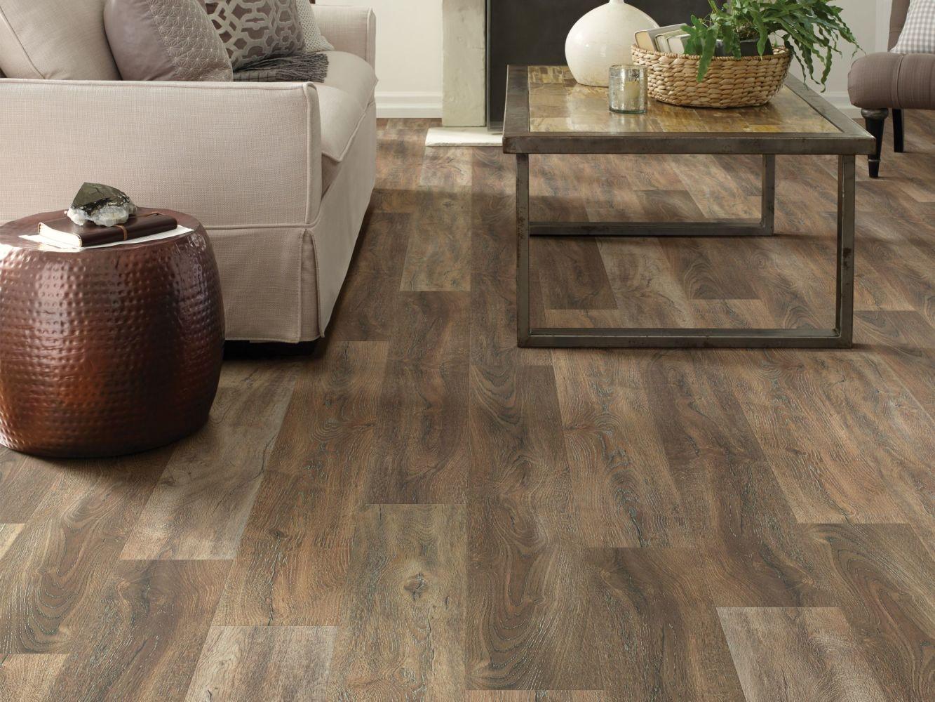 Shaw Floors Reality Homes Cascadia Sorrento 00813_112RH