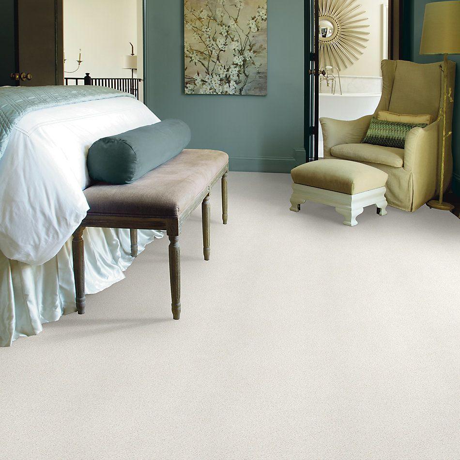 Shaw Floors SFA Fyc Tt Blue Net Sweet Innocence (t) 120T_5E023