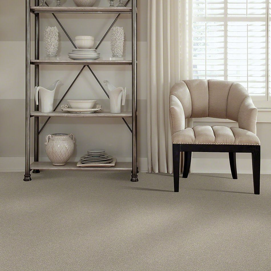 Shaw Floors Simply The Best Montage II Shoreline Haze 120T_5E082