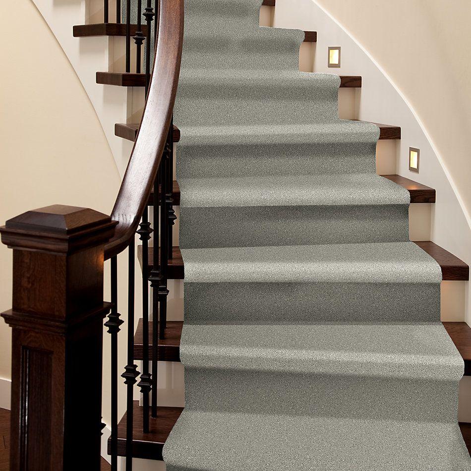 Shaw Floors Simply The Best Attainable Net Soft Fleece 120T_5E094