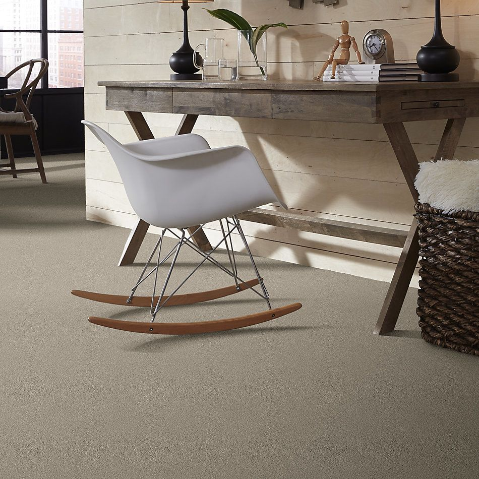 Shaw Floors Simply The Best Montage I Net Shoreline Haze 120T_5E098
