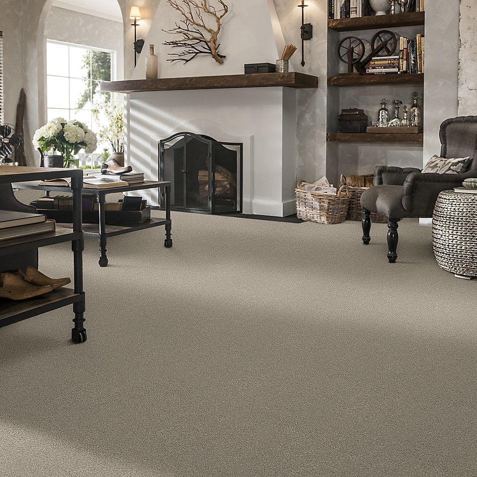 Shaw Floors Value Collections Montage II Net Shoreline Haze 120T_5E099