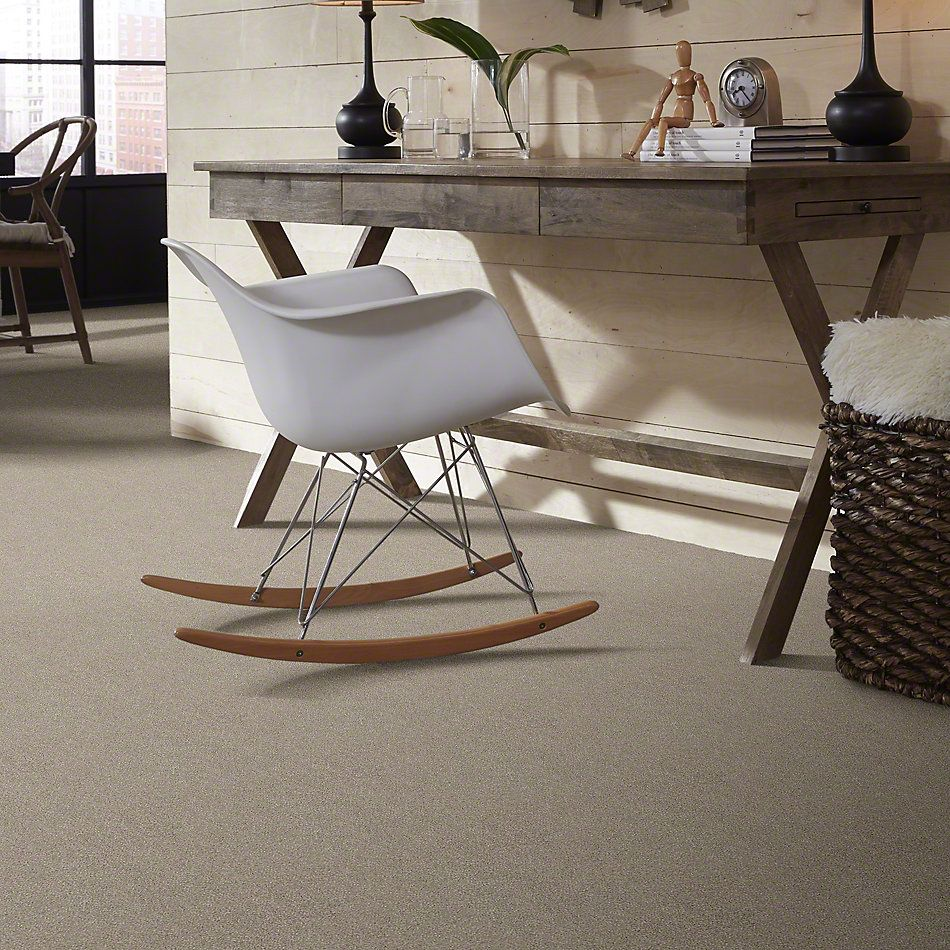 Shaw Floors Simply The Best Momentum I Driftwood 120T_E9967