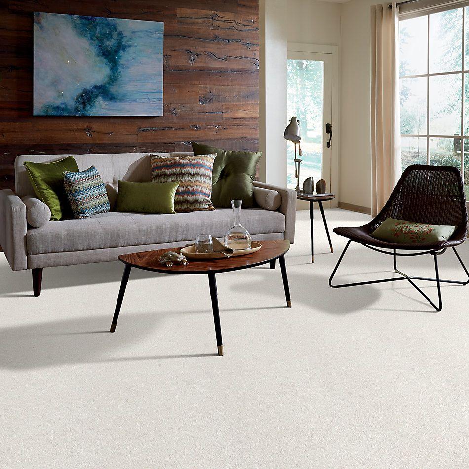 Shaw Floors SFA Fyc Tt II Net Clean Linen (t) 122T_5E022