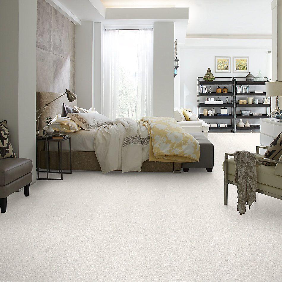 Shaw Floors SFA Fyc Tt Blue Net Clean Linen (t) 122T_5E023