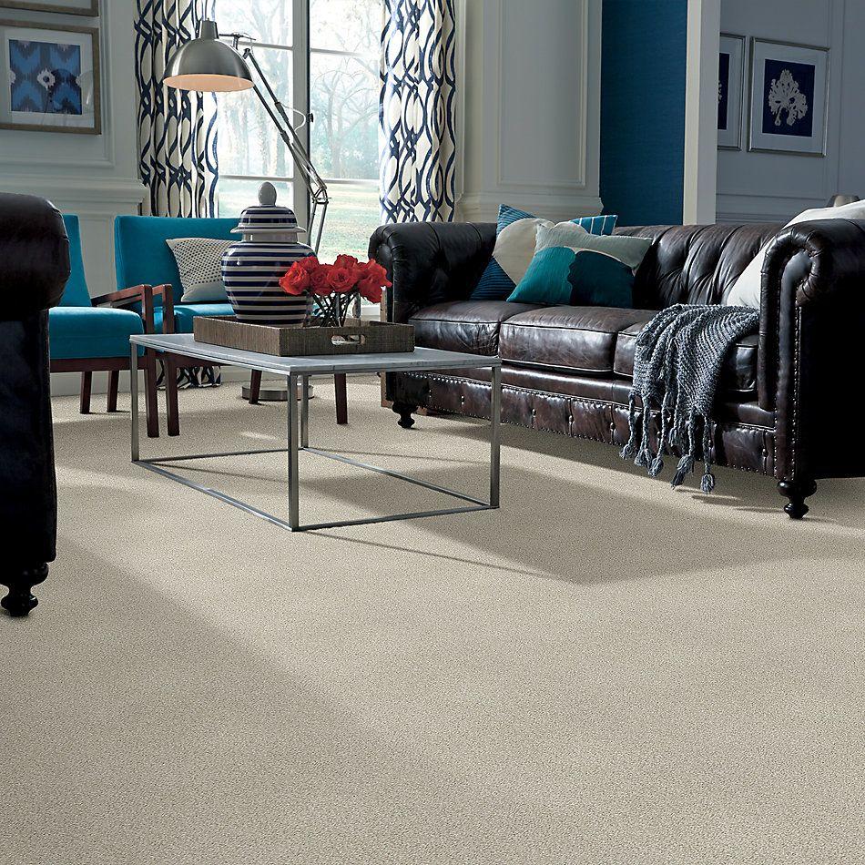 Shaw Floors SFA Fyc Tt II Net Sand Castle (t) 127T_5E022