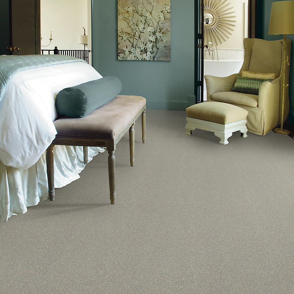 Shaw Floors Simply The Best Montage II Net Morning Frost 131A_5E099